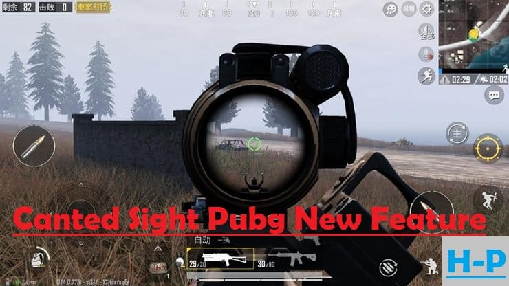 Canted Sight Pubg